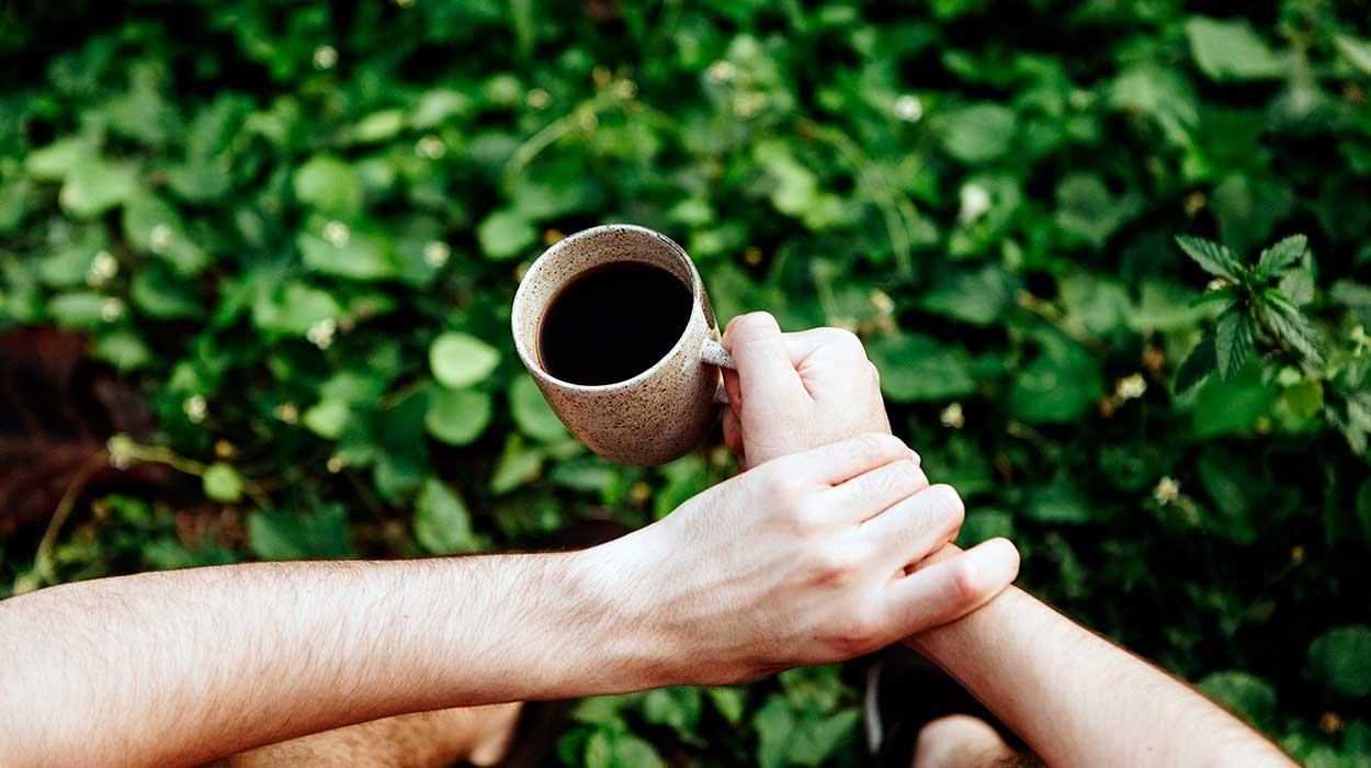 Costa Rica coffee plantation trip price where